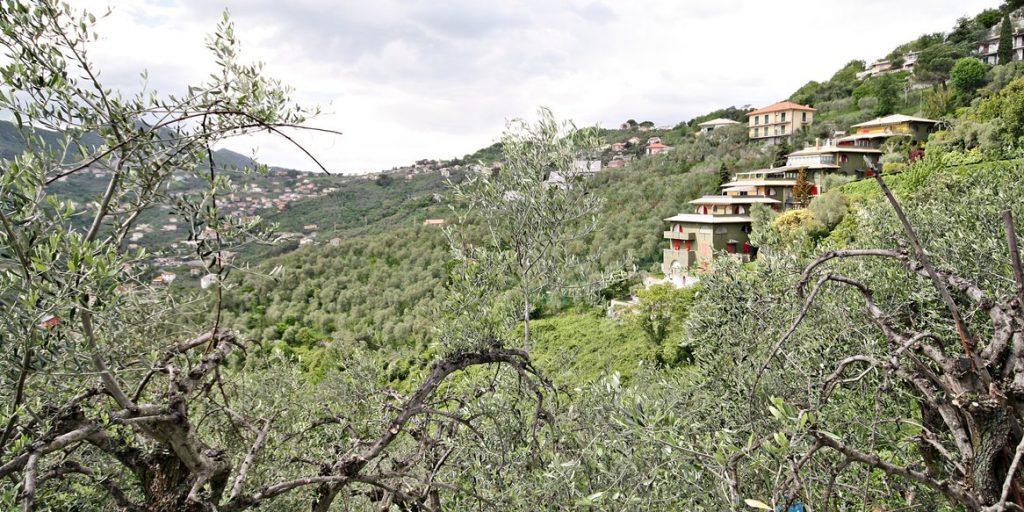 Villa a Schiera in Vendita, Leivi - Via Costasecca, 53