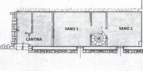 Pianta 2 per portali